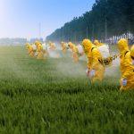 Você sabe o quanto está contaminado?