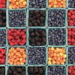 Os alimentos estimulam o seu sistema imunitário?