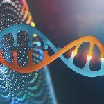 Se a genética diz é o teu destino.